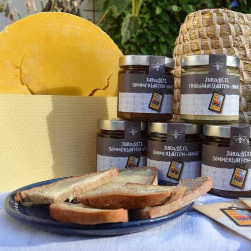 Einführung von Juradistl-Honig im Landkreis Regensburg