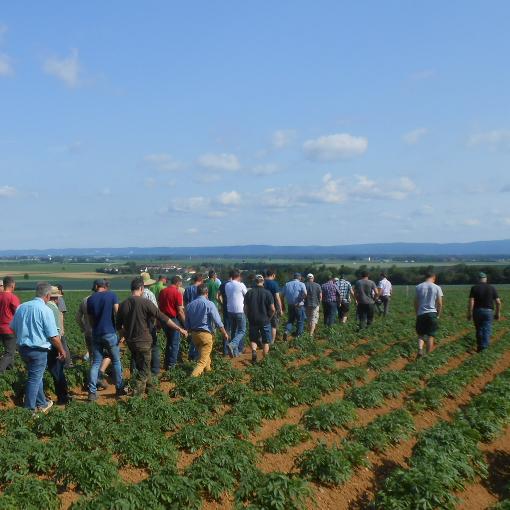 Kartoffeltag in Hellkofen am 06.06.2019