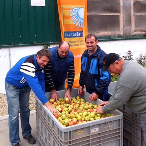 Juradistl-Streuobst – Unser Obst ist Mehrwert! Apfelsammlungen im Landkreis Regensburg durch Landschaftspflegeverband Regensburg