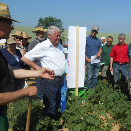 Bodenschutz in Kartoffeln nützt Gewässern und Landwirten – Initiative boden:ständig in Petzkofen