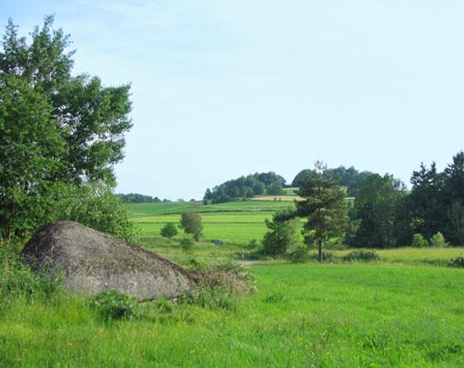 Vorwaldwiesen